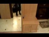 Шкафы-купе со вставкой зеркала с матовой инкррустацией и стразами (Обзор)